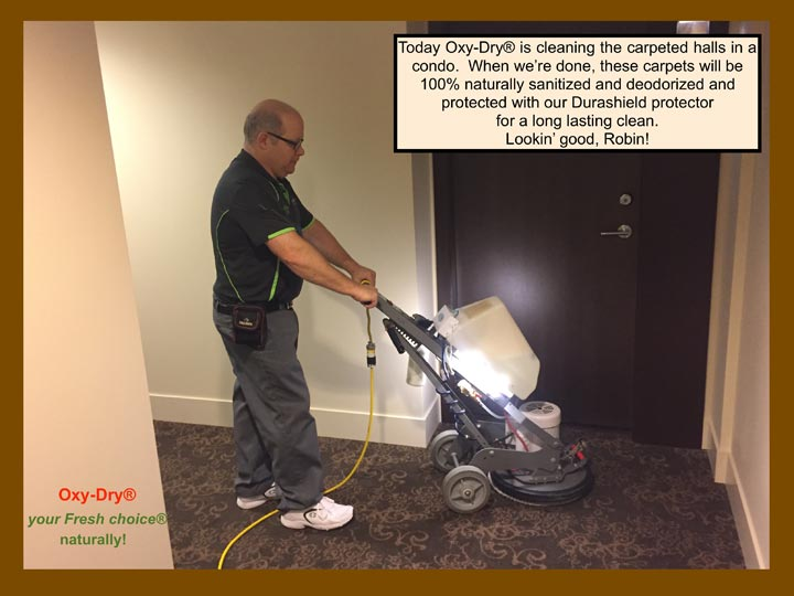 Oxy-Dry® commercial carpet cleaning includes Durashield protector