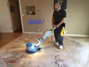 Area rug cleaning with Oxy-Dry®